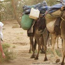 MarocAvril2011-143