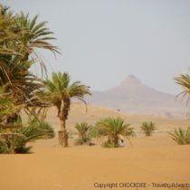 MarocAvril2011-419