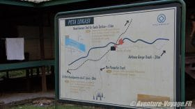 Headhunter 's trail - BORNEO
