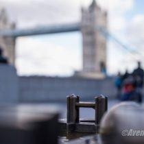 D3-LONDRES-2016 (44)