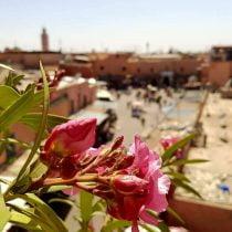 Retour a Marrakech