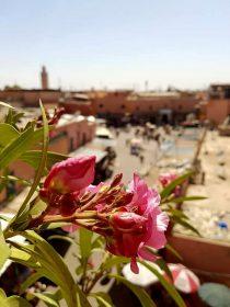 Maroc-Marrakech (1)