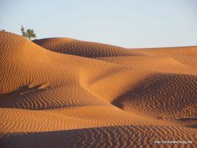 marocavril2011-327
